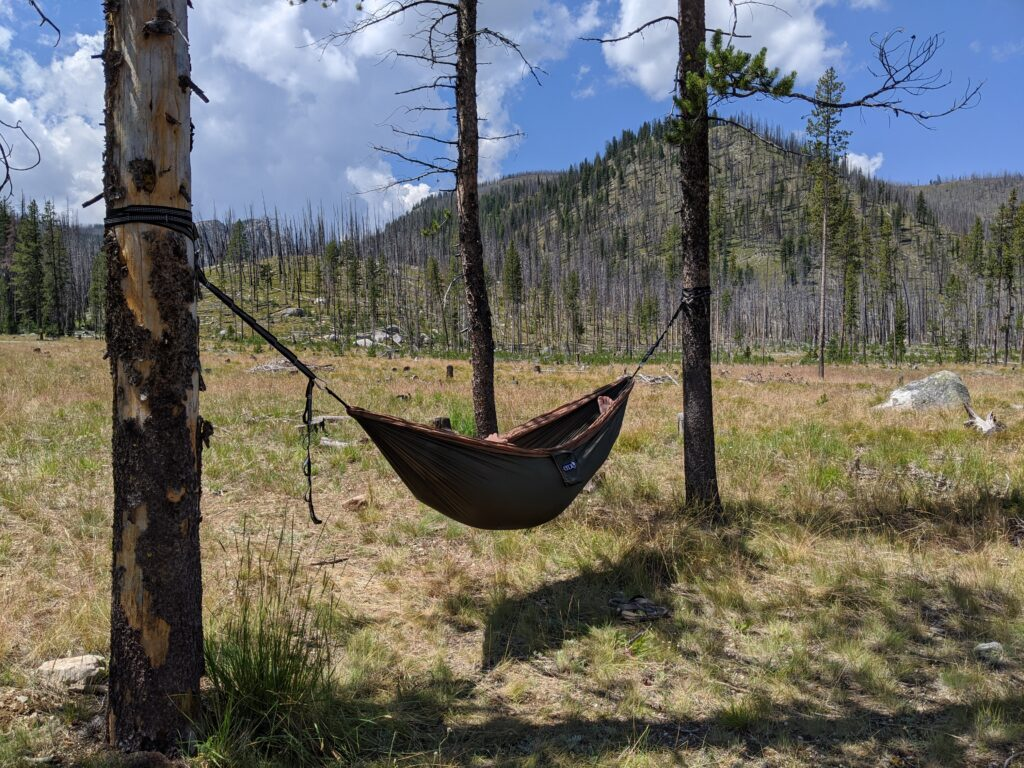 The hammock setup between two trees with large hills covered in burnt trees in the background.