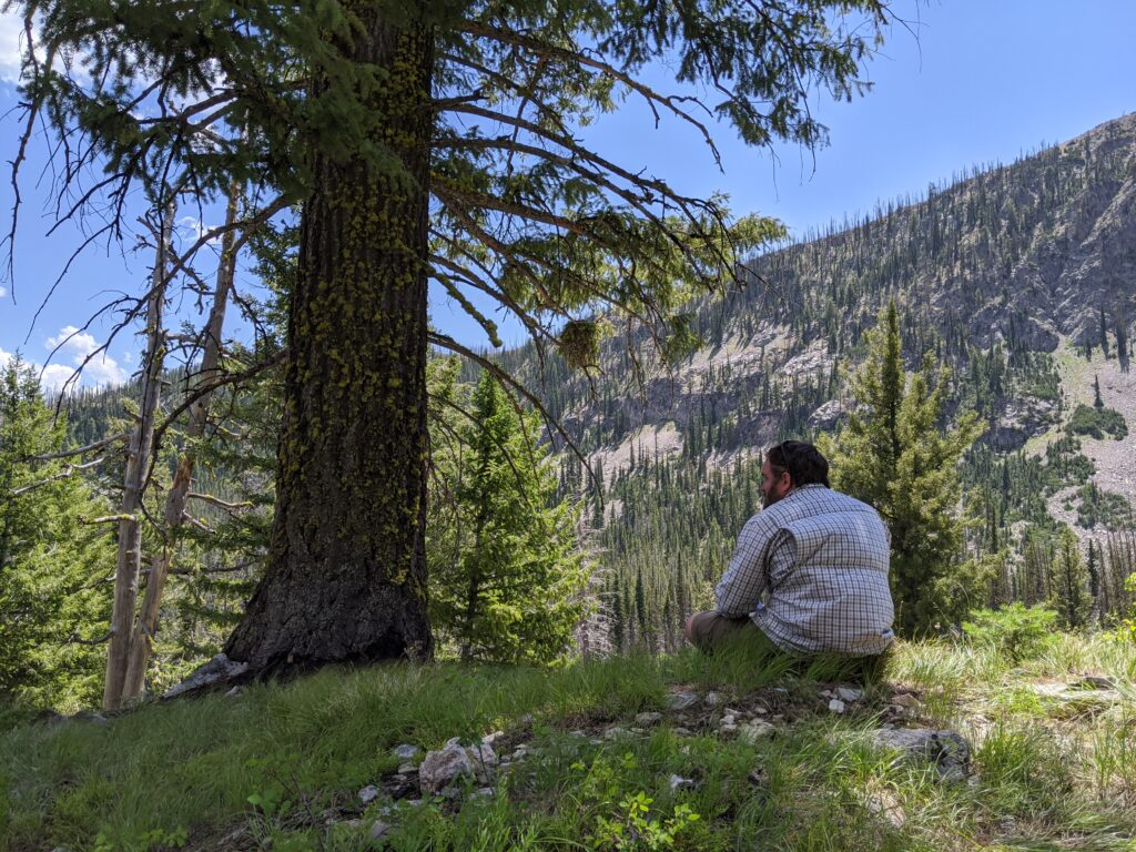 Eric sitting under a tree having lunch and admiring the mountain views