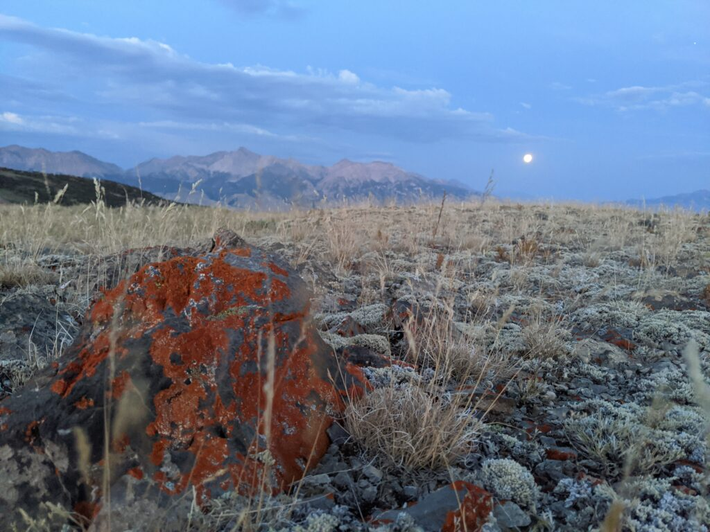 A worms eye view of the mountain with an orange frosted rock in the foreground and the mountain and full moon in the background.